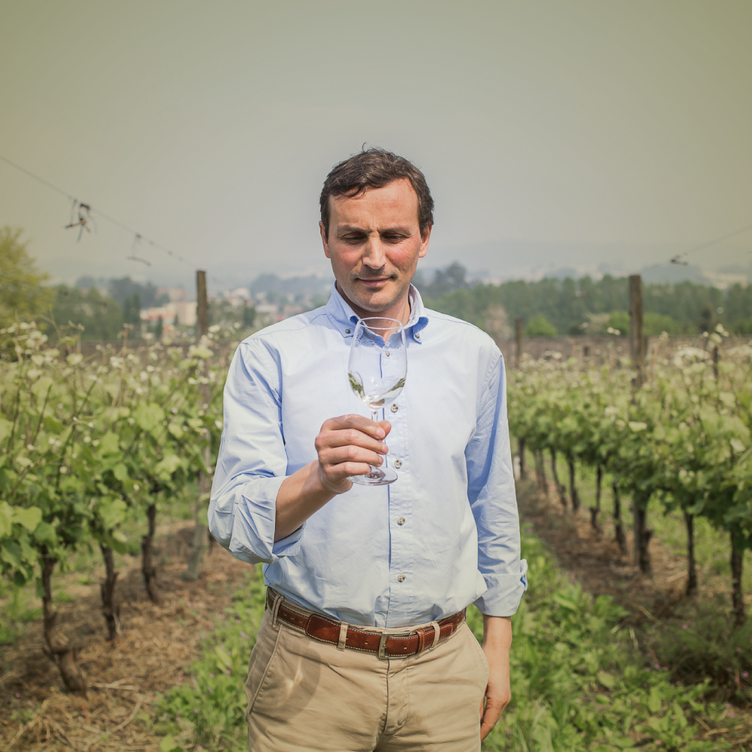 Meet our Chief Winemaker, Manuel Soares